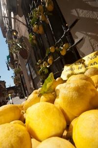 dikey monterosso20120819_0077