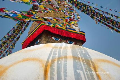 nepal 17.03.14 2_6
