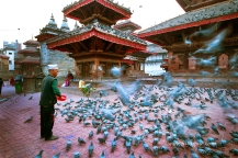 nepal 17.03.14 (30)