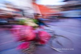 nepal 17.03.14 (57)