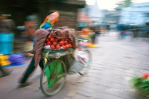 nepal 17.03.14 (74)