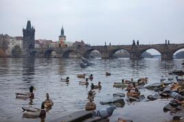 Prag (21)